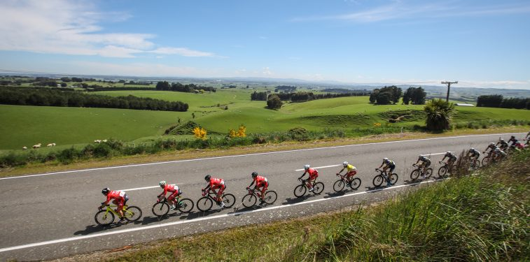 SBS Tour of Southland