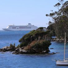See Stewart Island and Southland by cruise ship