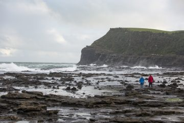 Walk on a Jurassic fossilised forest at Curio Bay in The Catlins