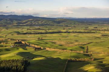 Lush rolling farmland in Central Southland