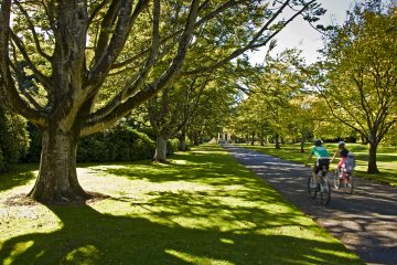 Queens Park is the jewel of Invercargill