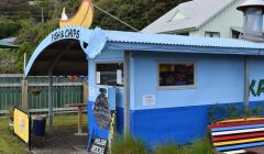 Get fresh fish and chips on Stewart Island