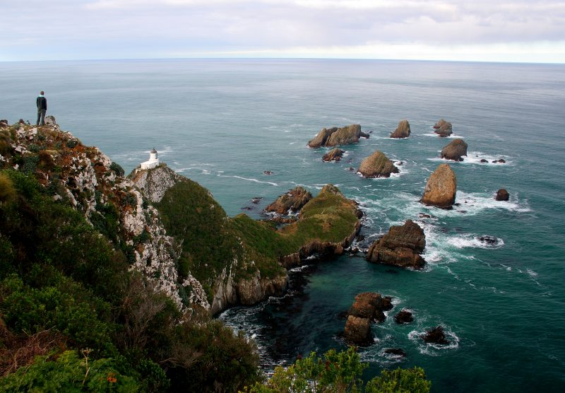 View from the top of Nugget Point