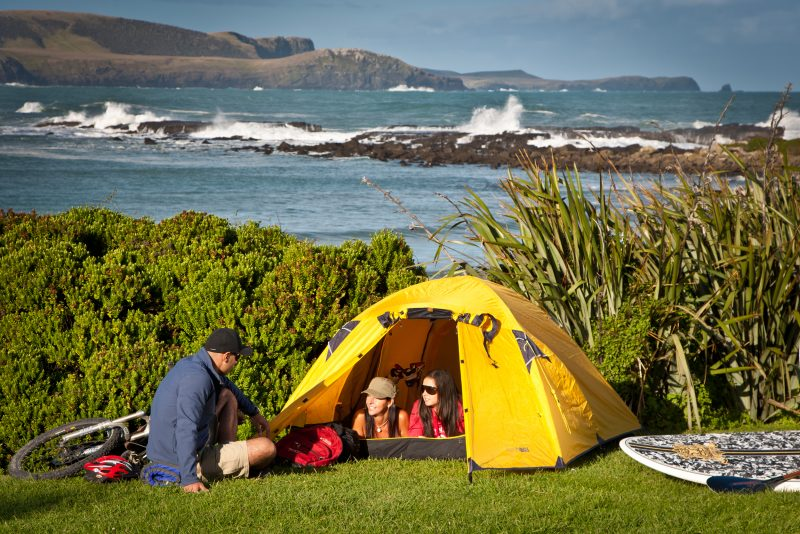 Campers at Curio Bay