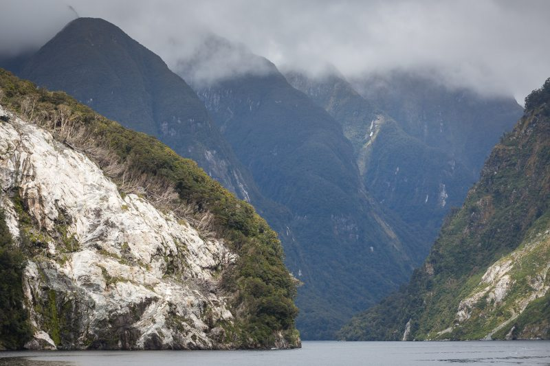 Doubtful Sound Wilderness Day Cruises - Real Journeys