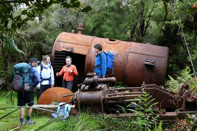 Boiler on the Rakiura Track