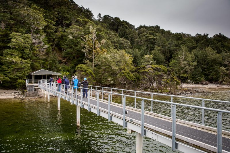Real Journeys - Te Anau Glowworm Caves