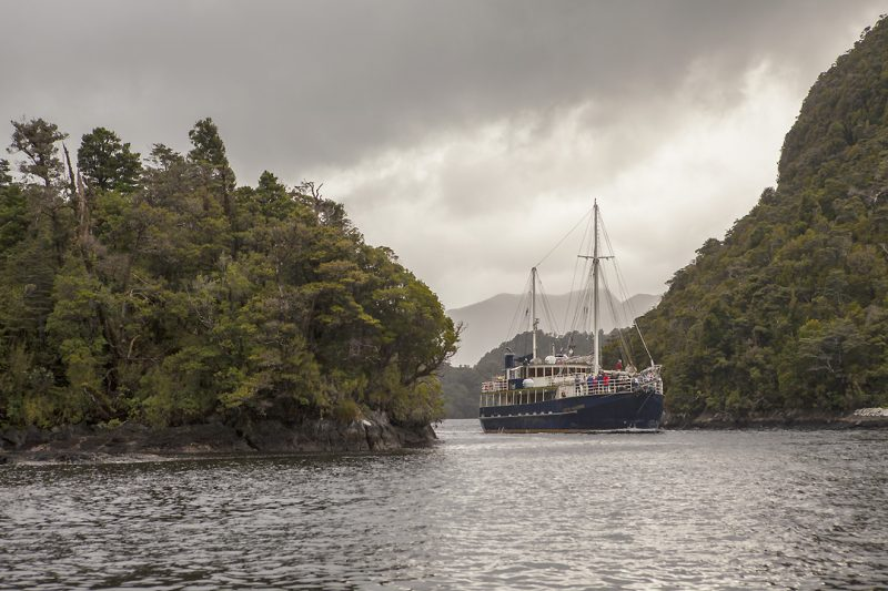 Real Journeys - Dusky Sound Discovery Expeditions