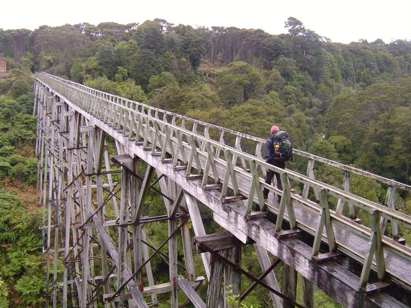Percy Burn Viaduct on the Hump Ridge Track