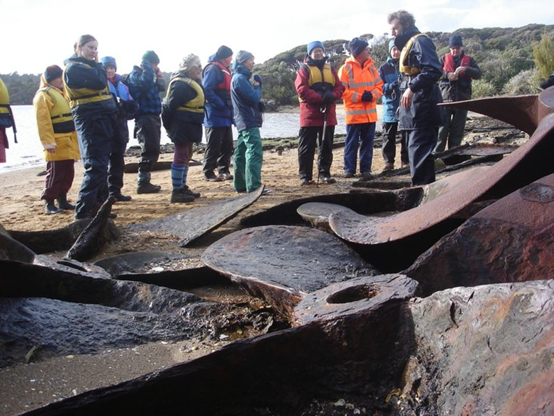 Stewart Island Conservation Expeditions