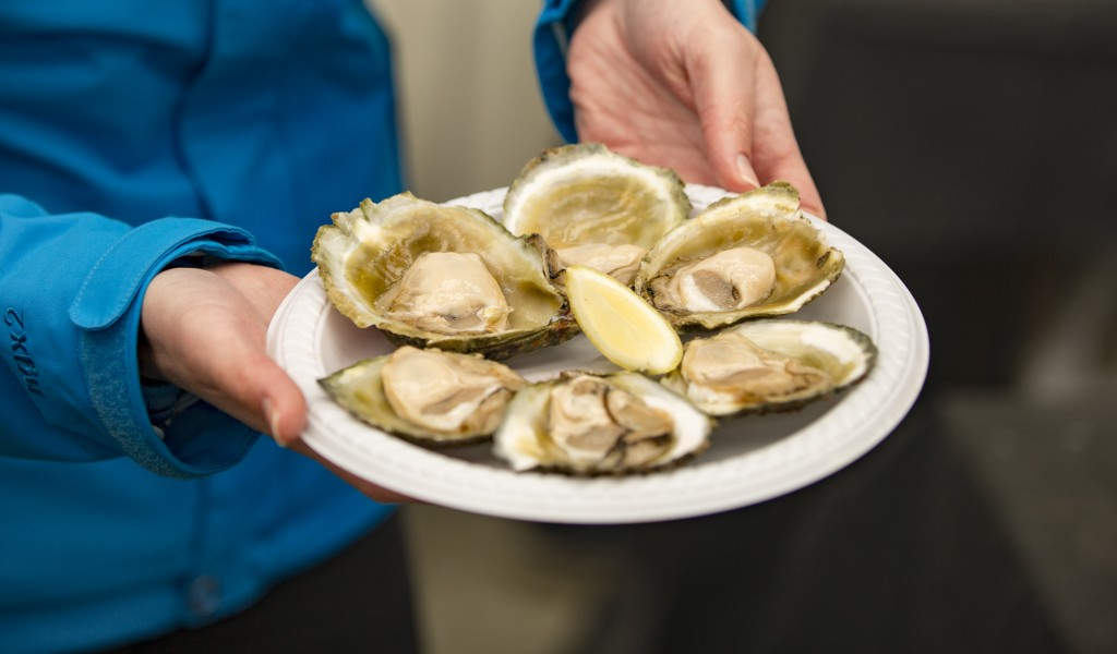 Bluff Food & Beverage - Bluff Oysters