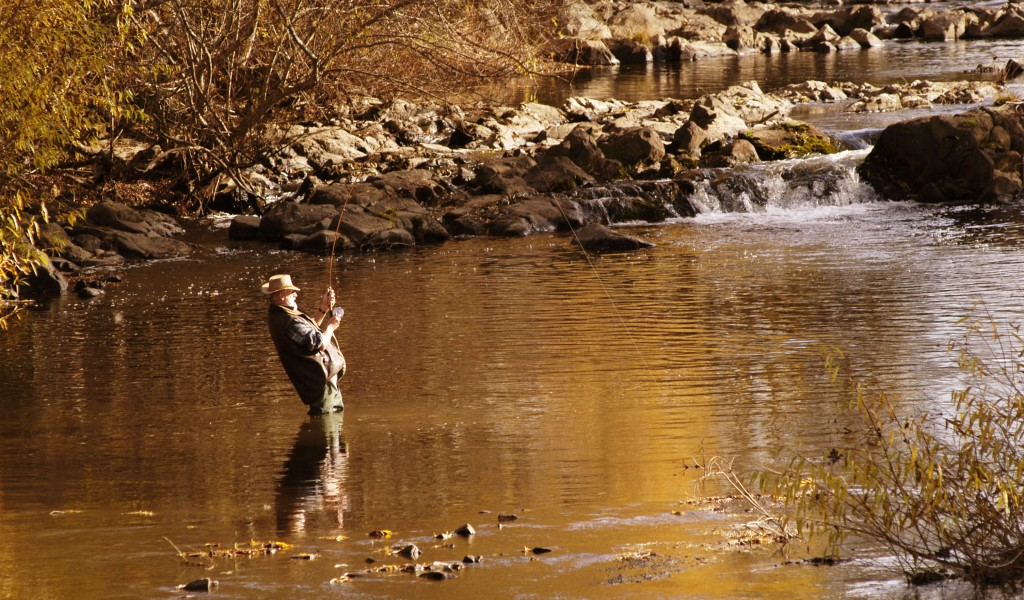 Fly Fishing In The Mataura River