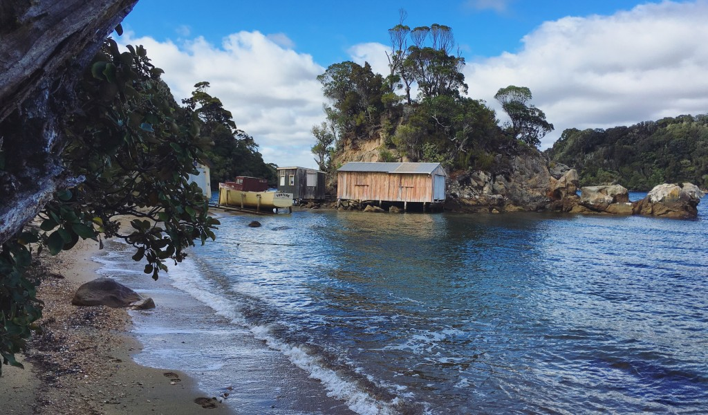 Stewart Island - Golden Bay