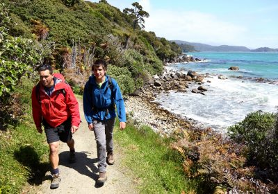 Rakiura Track Great Walk on Stewart Island