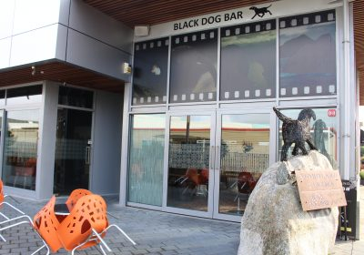 Black Dog Bar